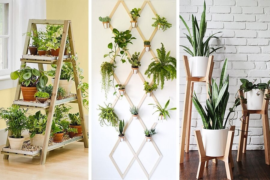 Improve Your Home's Decor with Stylish Indoor Plant Displays