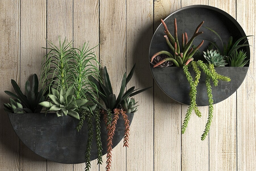 Oxidzed zinc wall planters can add a decorative focal point to your room.